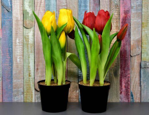 Sztuczne kwiaty w doniczce jak żywe – jak to możliwe?